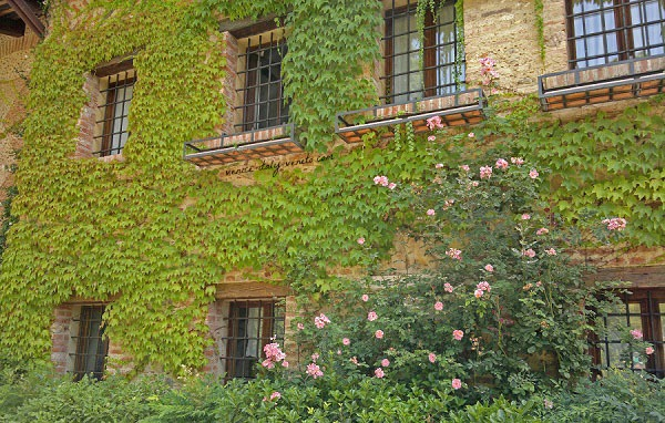 Flower covered house