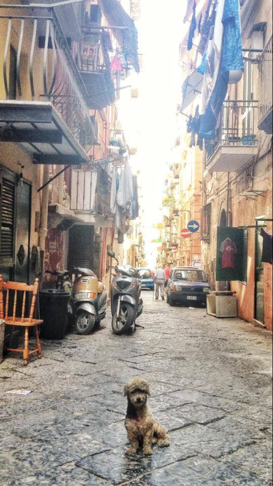 Street Scene Naples