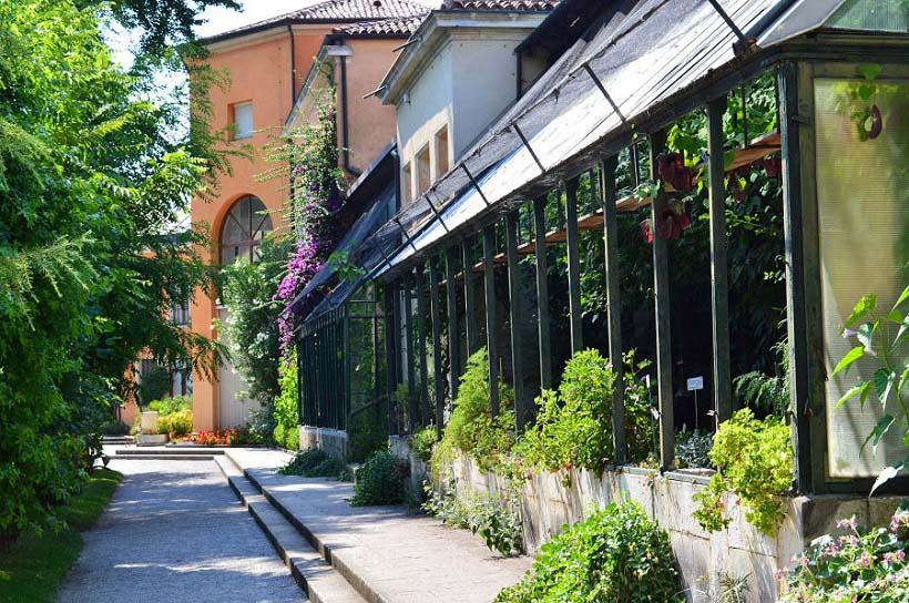 Greenhouse Botanical Gardens of Padova