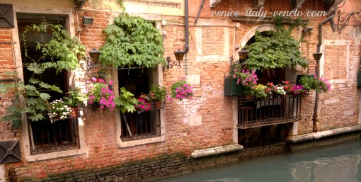 Window Boxes in Venice