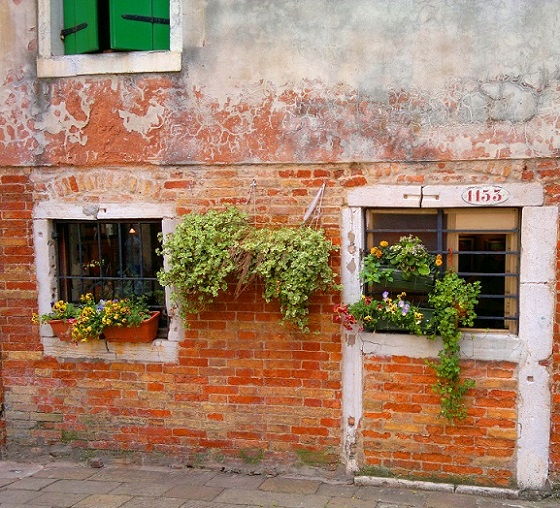 Flower Boxes in the Ghetto of venice
