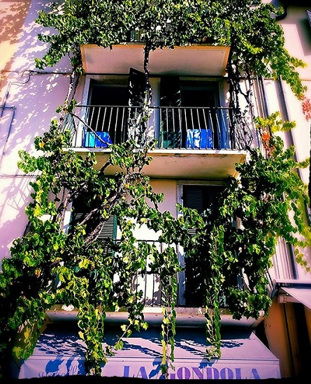 House covered in flowers Lazise Italy