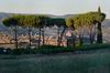 Orvieto sunset