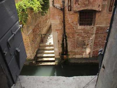 Friendly Venice