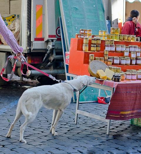 Market-in-Italy