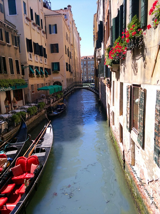 Flower Boxes along Venetian Canal