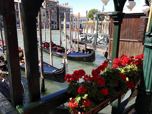 Geranium flower boxes and gondolas in Venice Italy