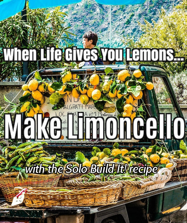 Solo Build It! turned my life of lemons into Limoncello