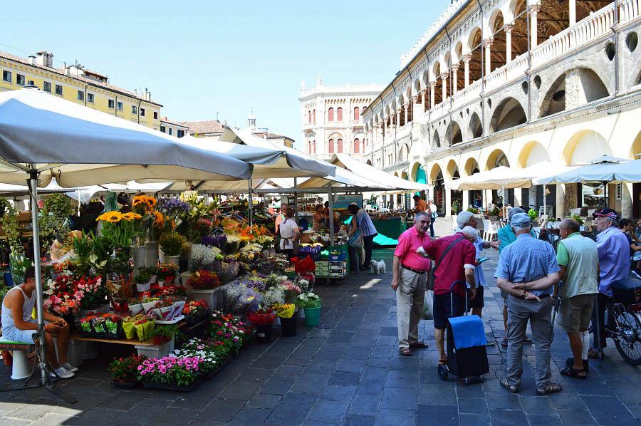 Market in Padova