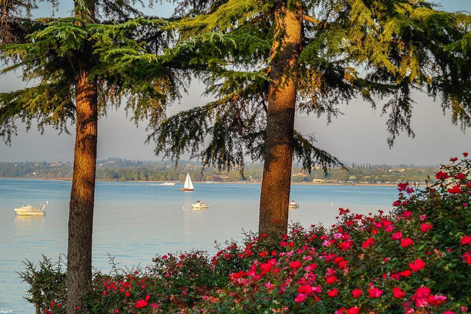 Peschiera Garda Lake Gardasee - photo by Anja