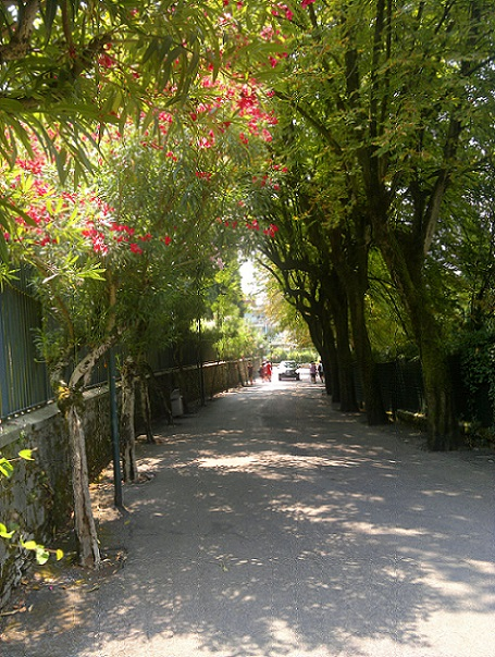 Road near Sirmione