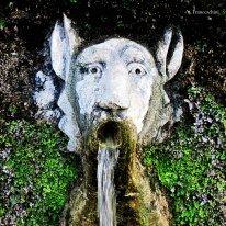 Fountain Italy