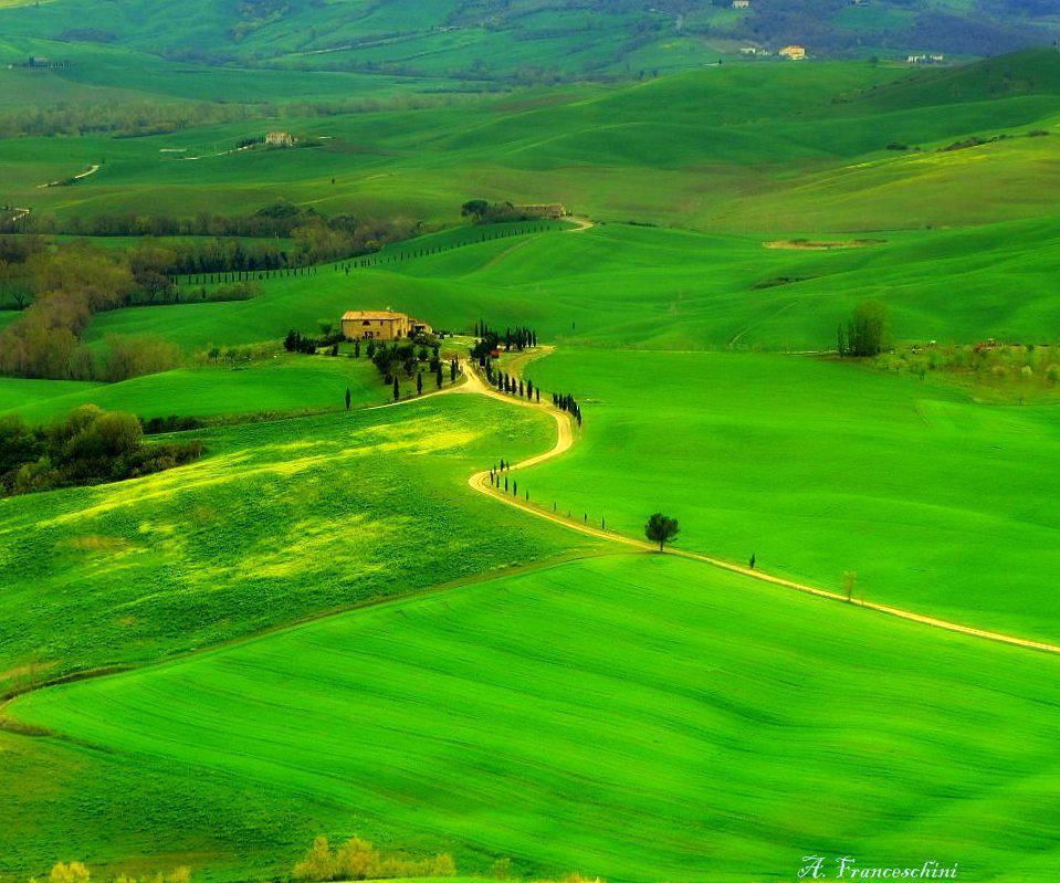 Tuscan Scenery