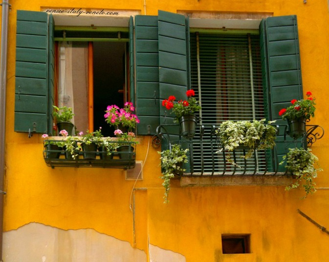 Window Boxes in Italy
